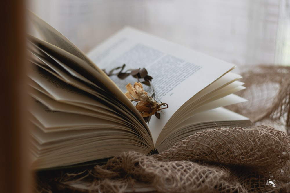 brown dried leaves on book page