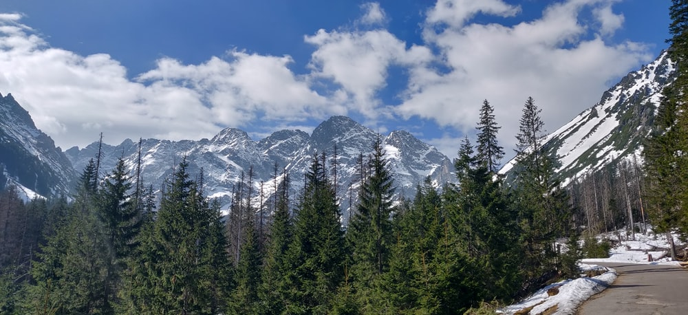 green pine trees near snow covered mountain under blue and white cloudy sky during daytime