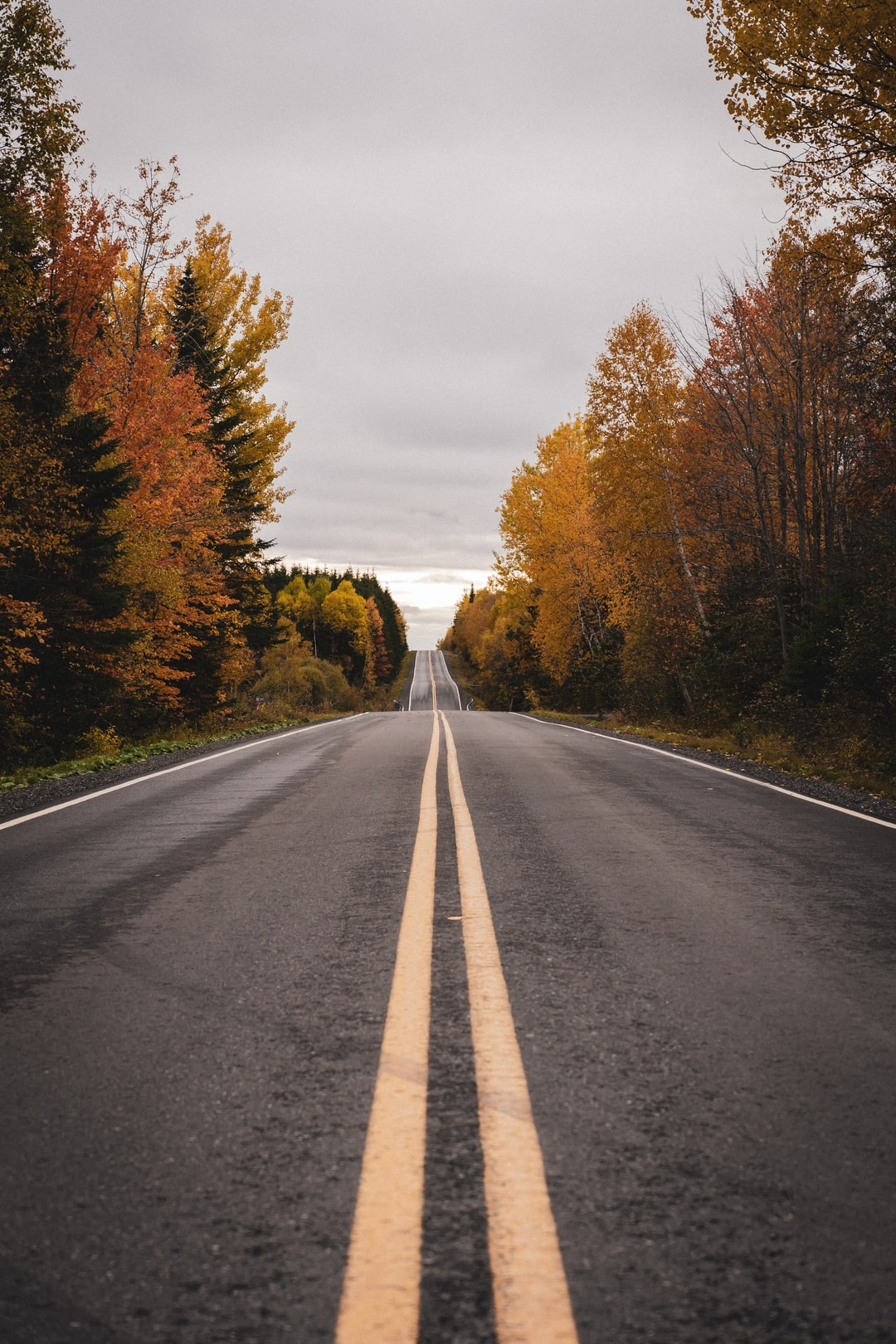 The mythic roads of Canada during the fall. Incredible !