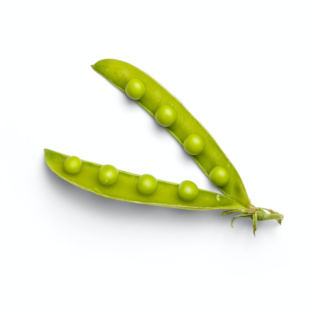 High-quality photo of a pea pod on a white background