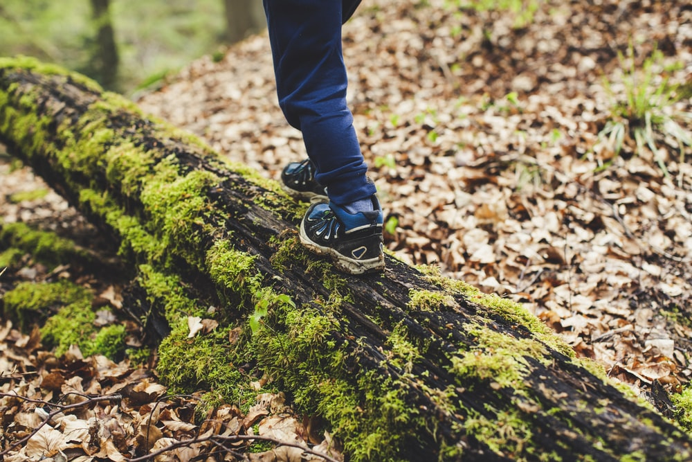 person in black pants and black and white nike sneakers standing on green moss covered ground