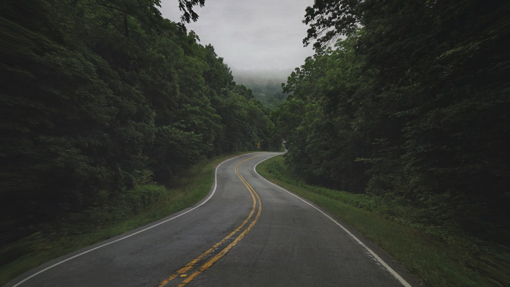 gray concrete road between green trees under white sky during daytime