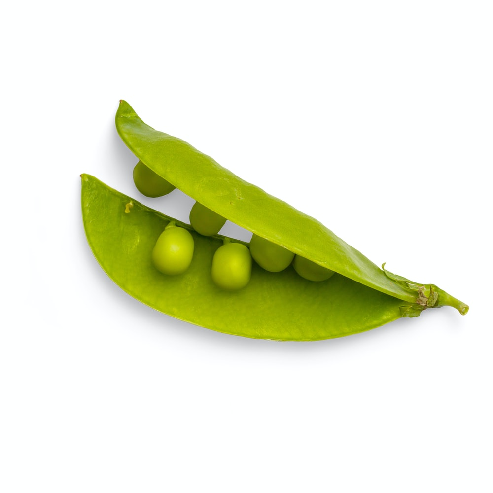 green oval fruit with white background