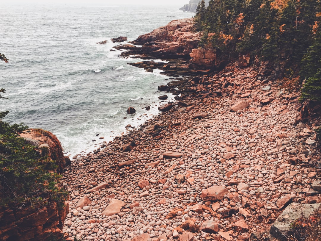 Rocky Shoreline in Acadia National Park, Bar Harbor Maine