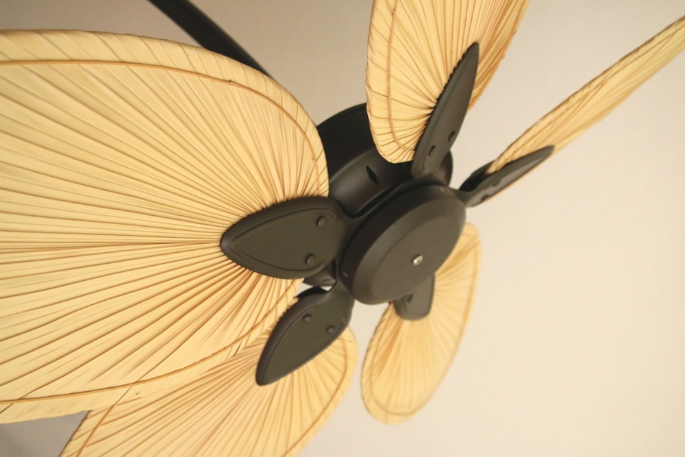 black and brown 5 blade ceiling fan