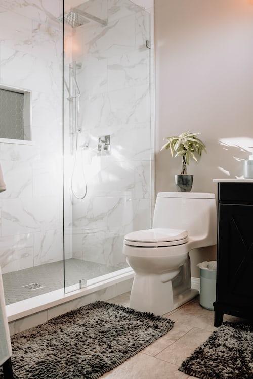black frameless shower door