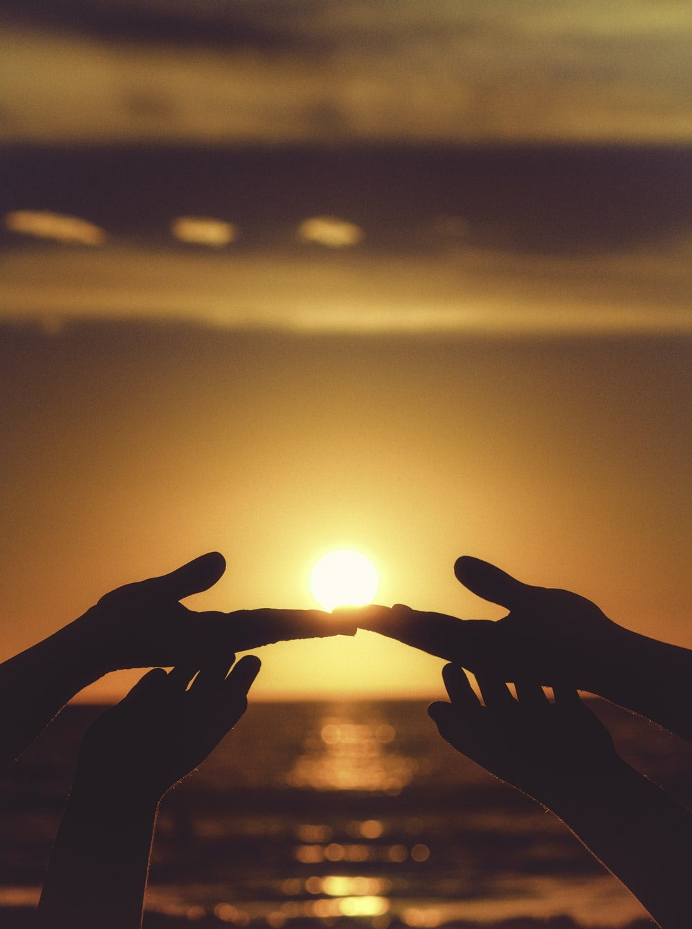 silhouette of persons hand during sunset