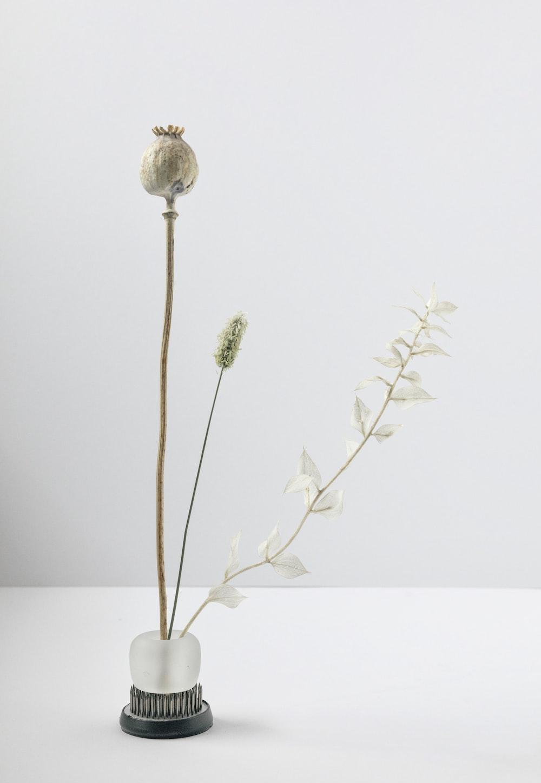 white flower on white ceramic vase
