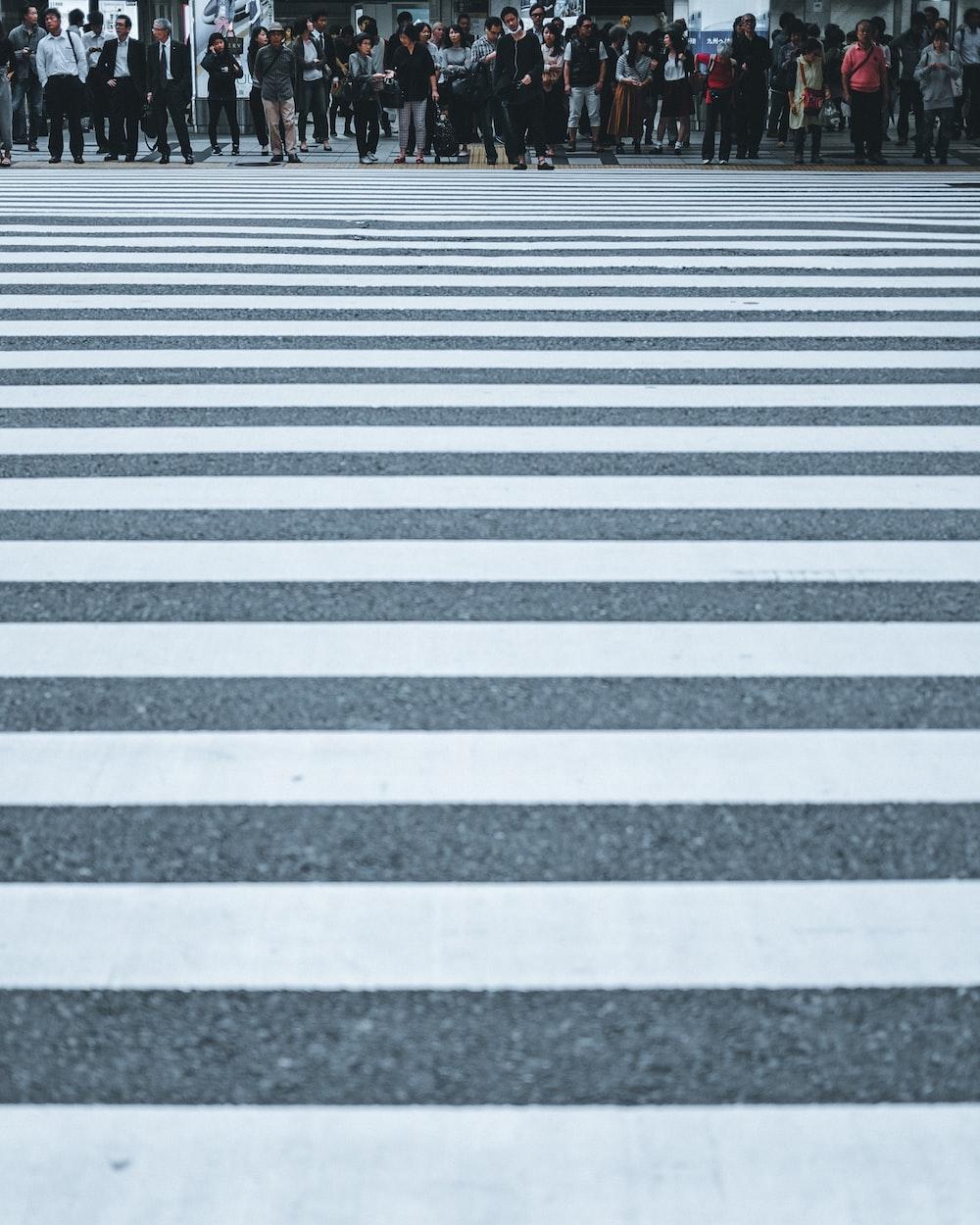 white and black stripe road