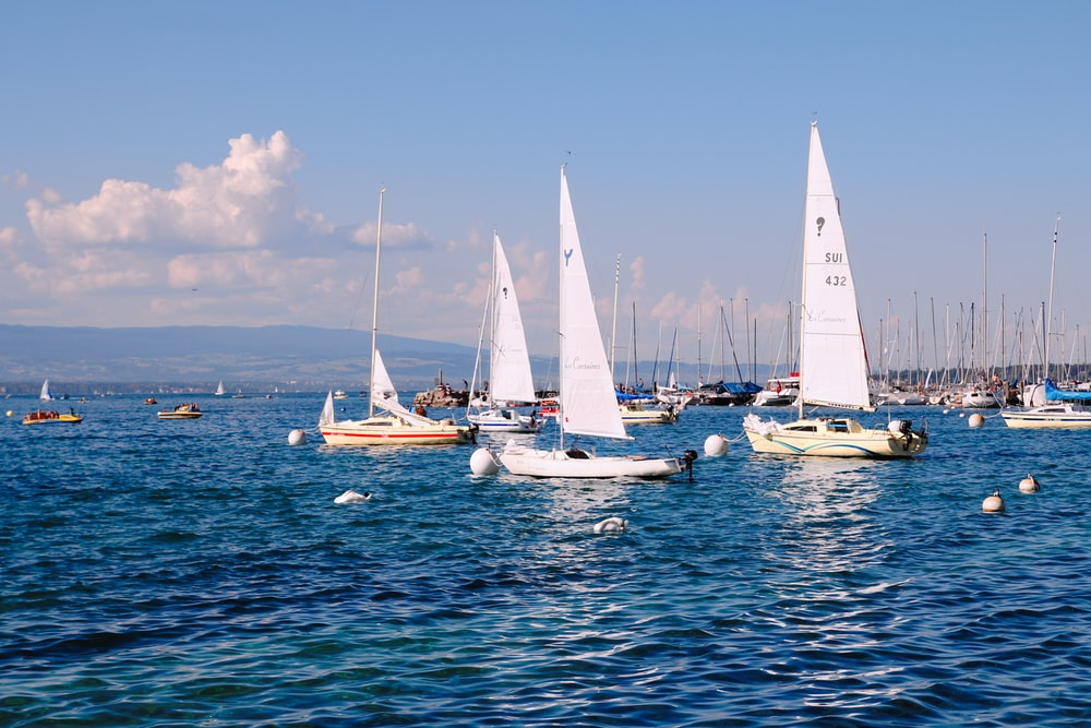 white sail boats on sea during daytime