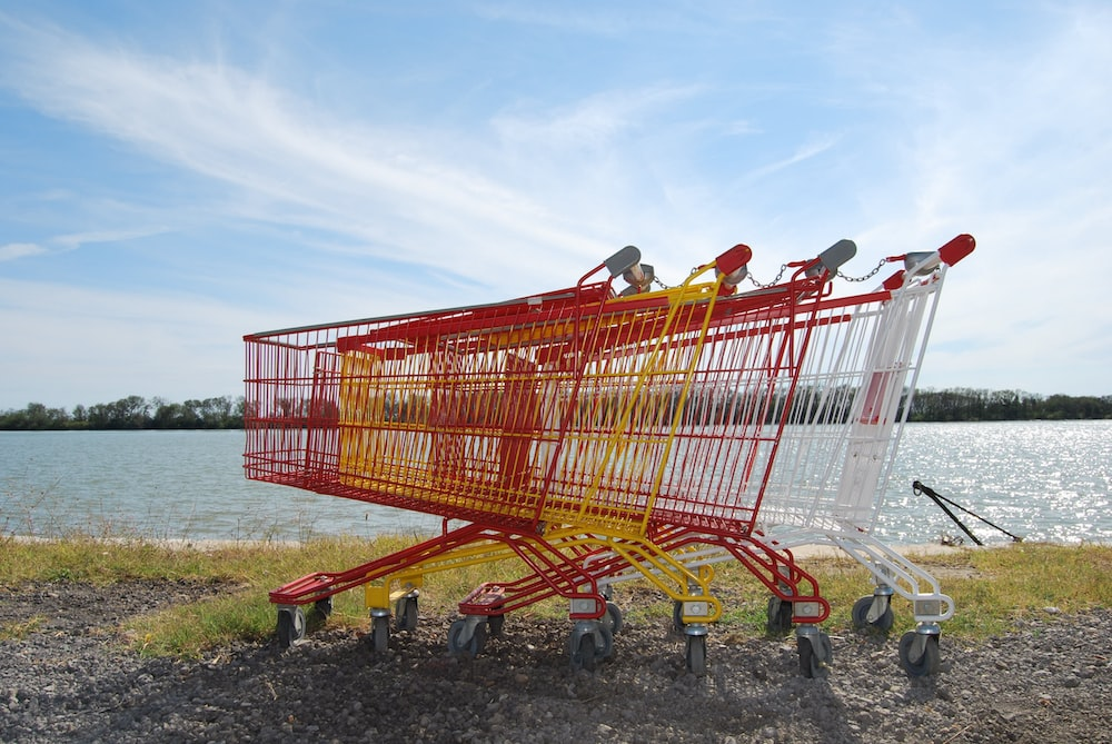 shopping carts on shore during daytime
