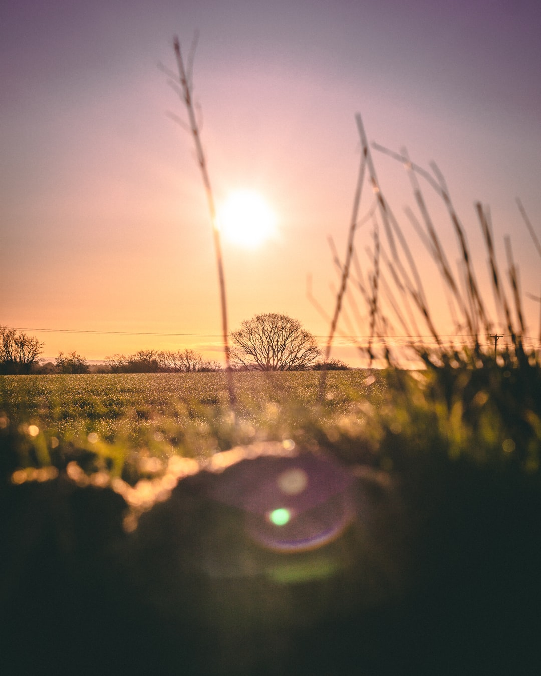 Morning sunrise in Yorkshire
