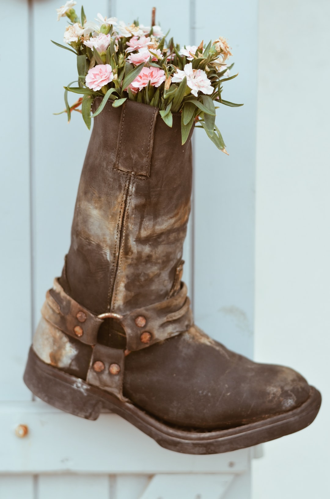Wild boot with flowers