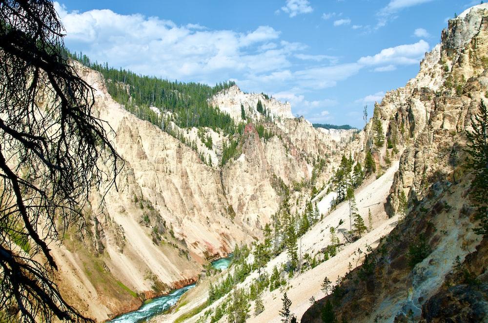 yelowstone national park