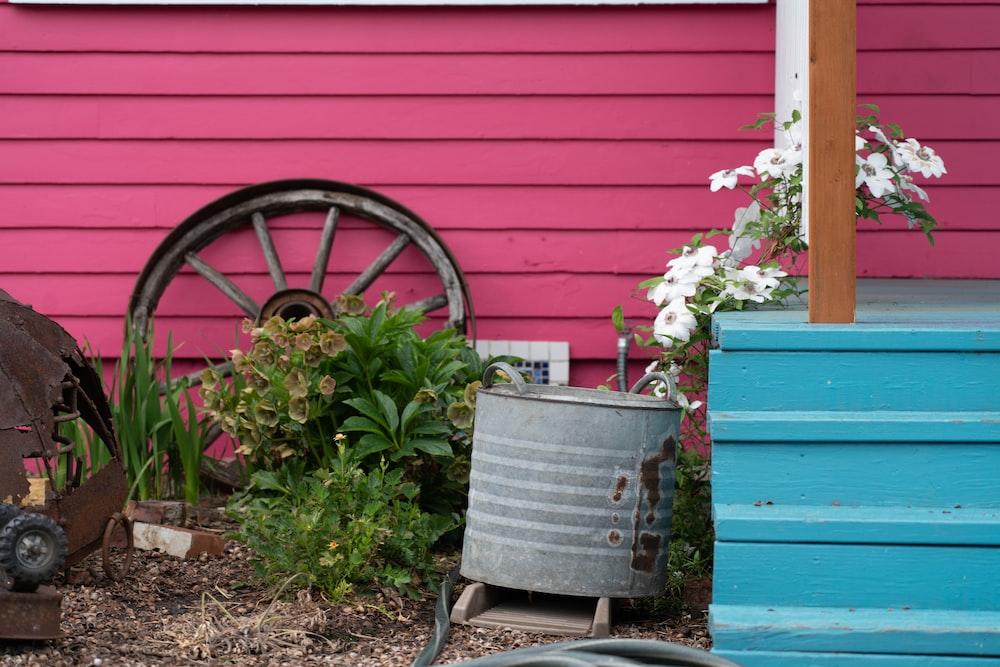 pink flowers on gray steel bucket