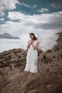 𝗟𝗼𝘀𝘁 𝗪𝗶𝗻𝗴𝘀 angel stories