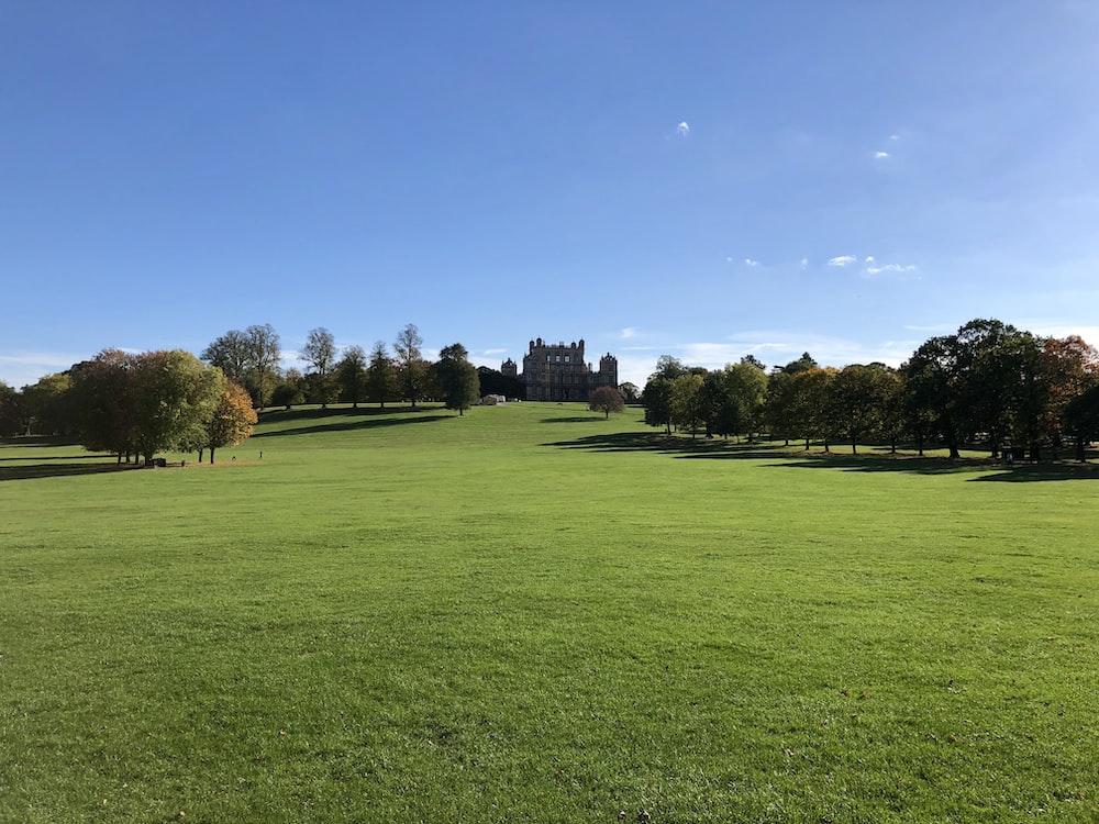 green grass field near trees under blue sky during daytime