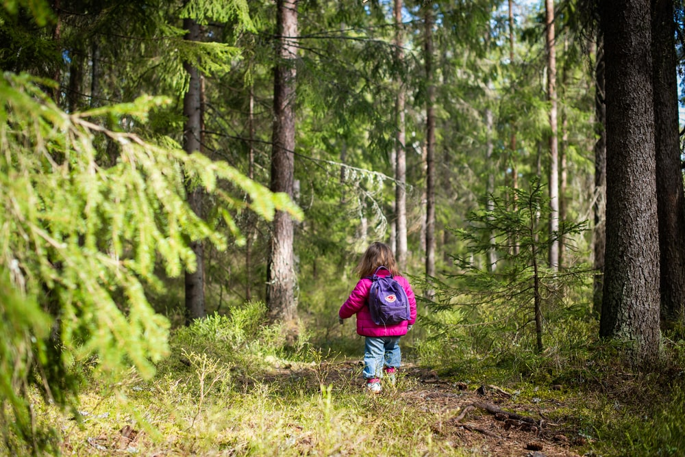 girl in red jacket walking on forest during daytime