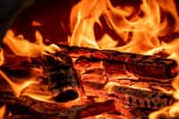 The wood fell in love                                                    with the fire passion stories