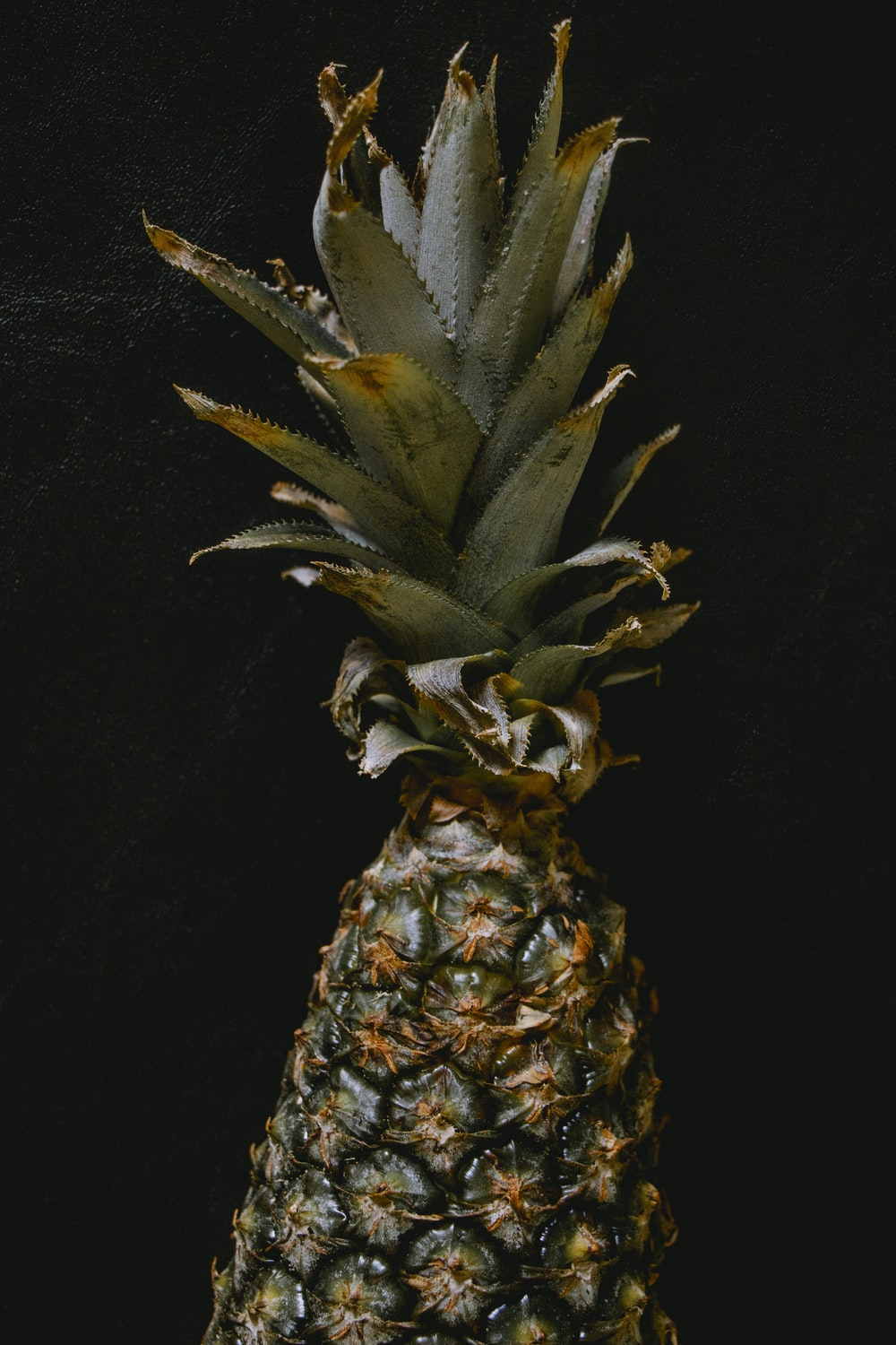 pineapple fruit with black background