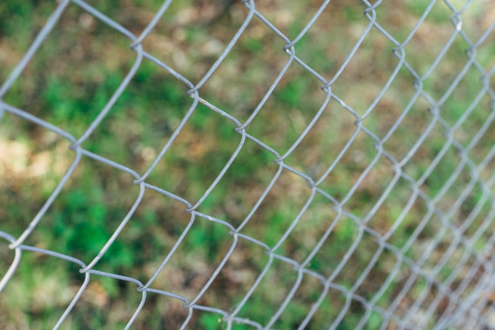 green metal fence with green grass