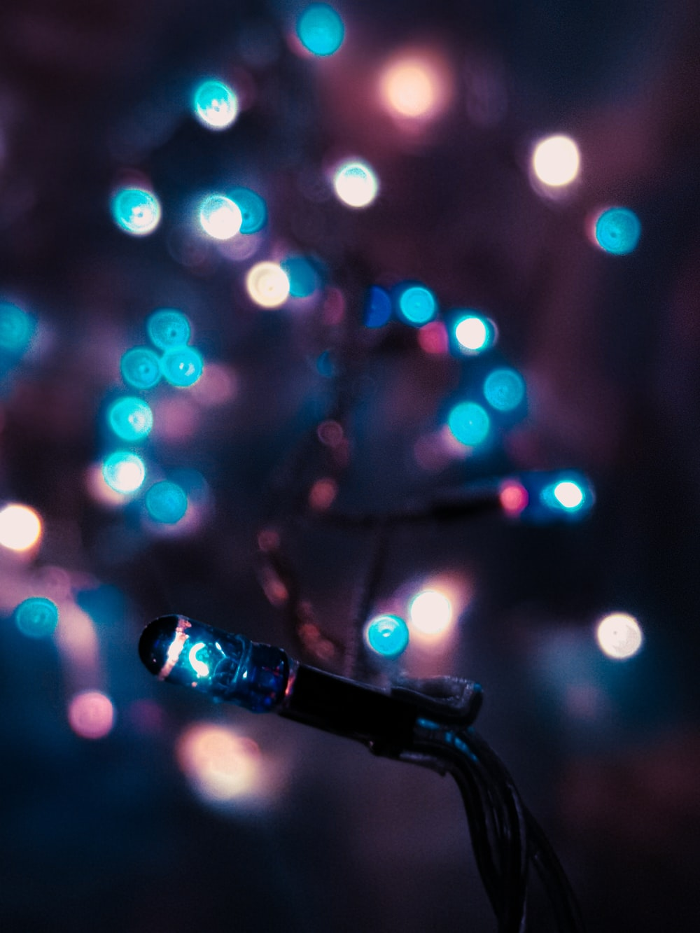 black microphone with lights in bokeh photography