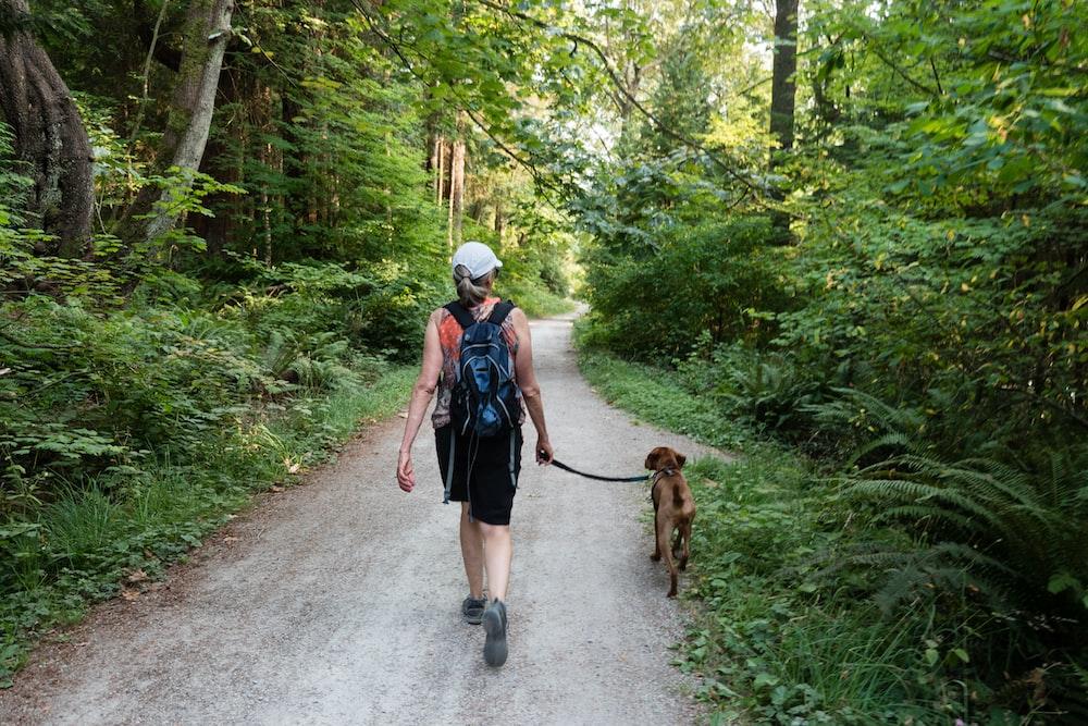 2 women walking on road with brown dog during daytime