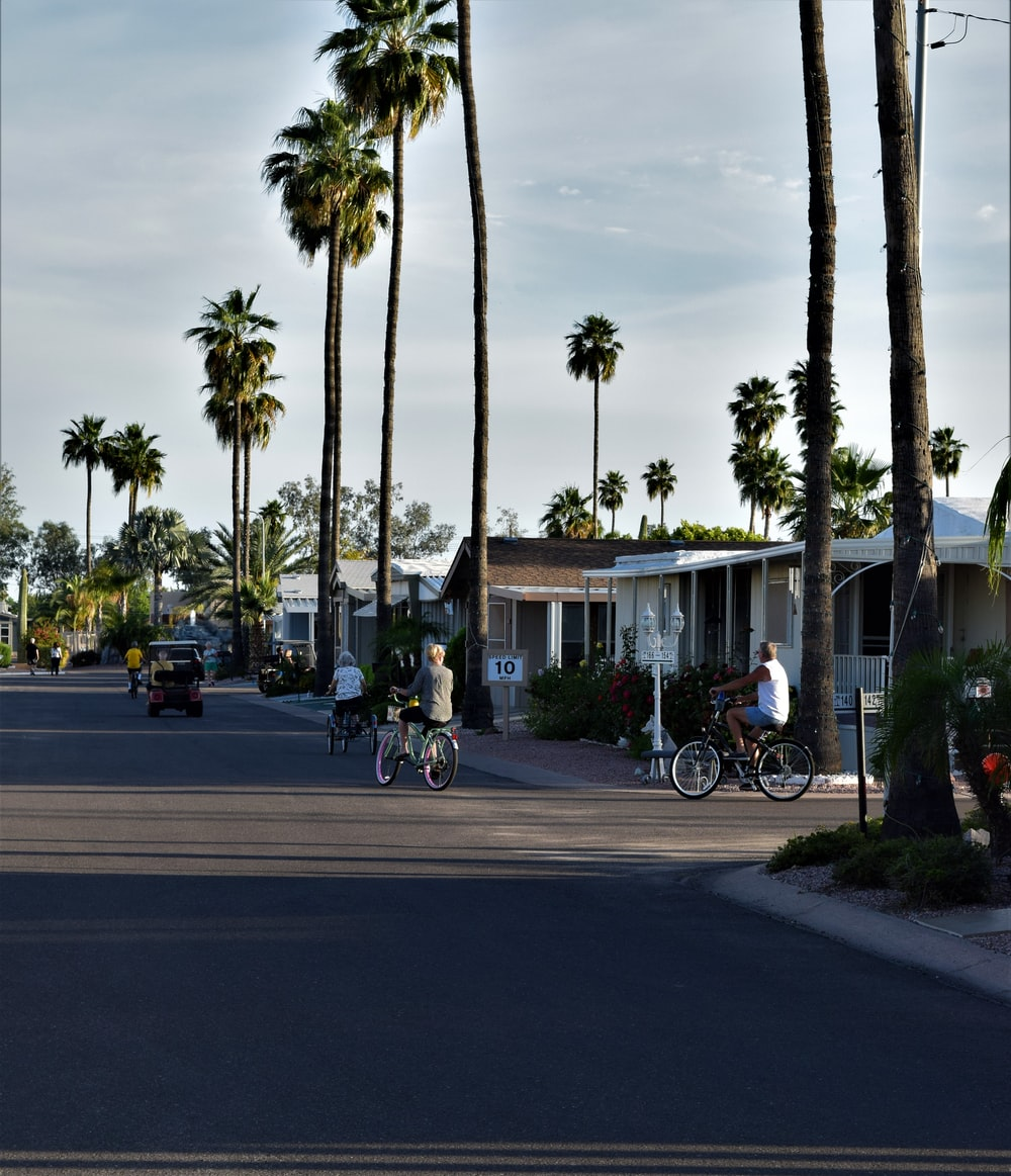 people riding bicycles on road near palm trees during daytime