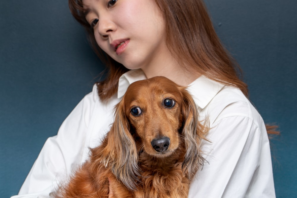 woman in white shirt holding brown long coated dog