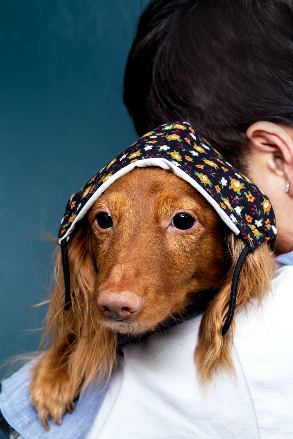woman in white and blue floral hat holding brown long coated dog