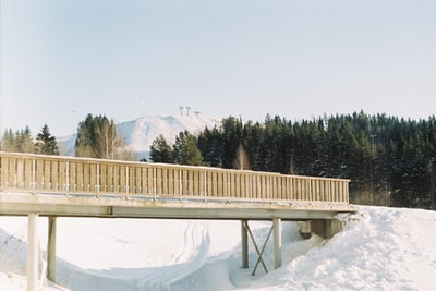 brown wooden bridge over river