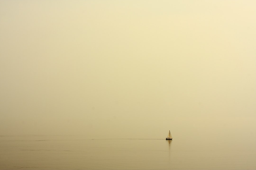 fog and boat
