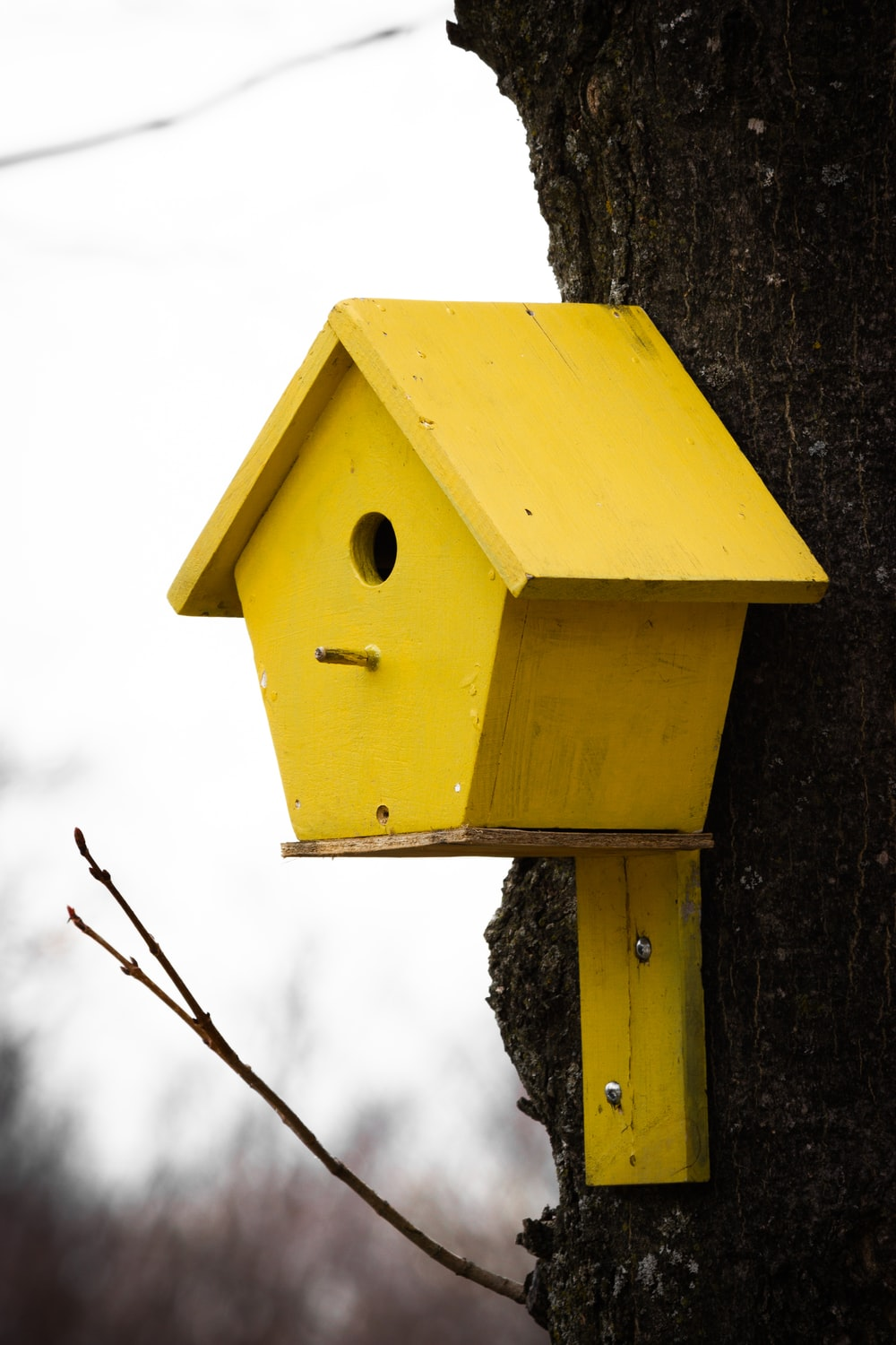 yellow and brown wooden bird house