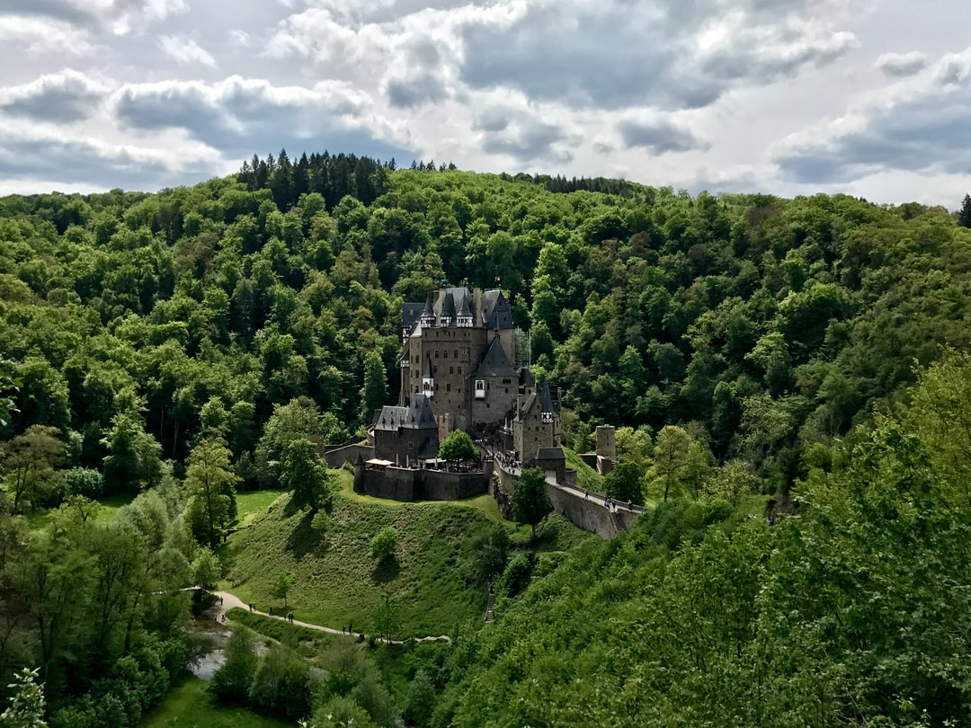 12th century German castle in the woods.