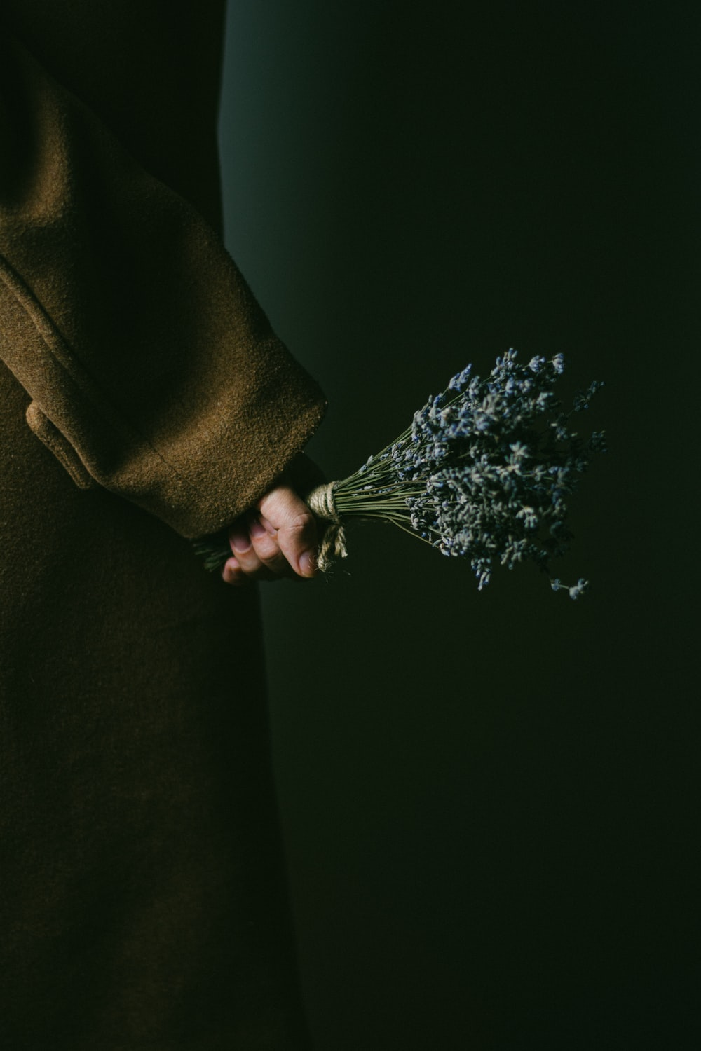person holding purple flowers in brown textile