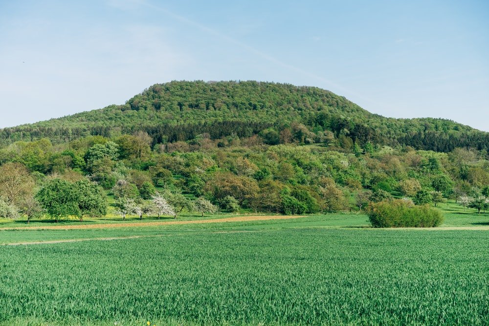 green grass field near green mountain under blue sky during daytime