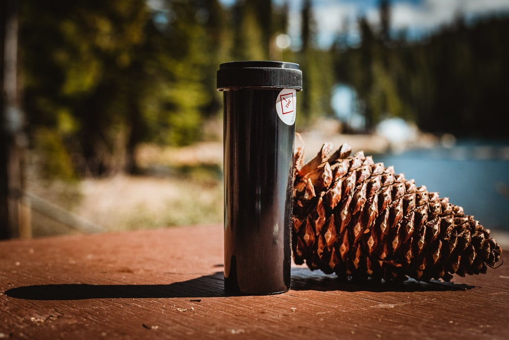 brown pine cone on brown wooden table