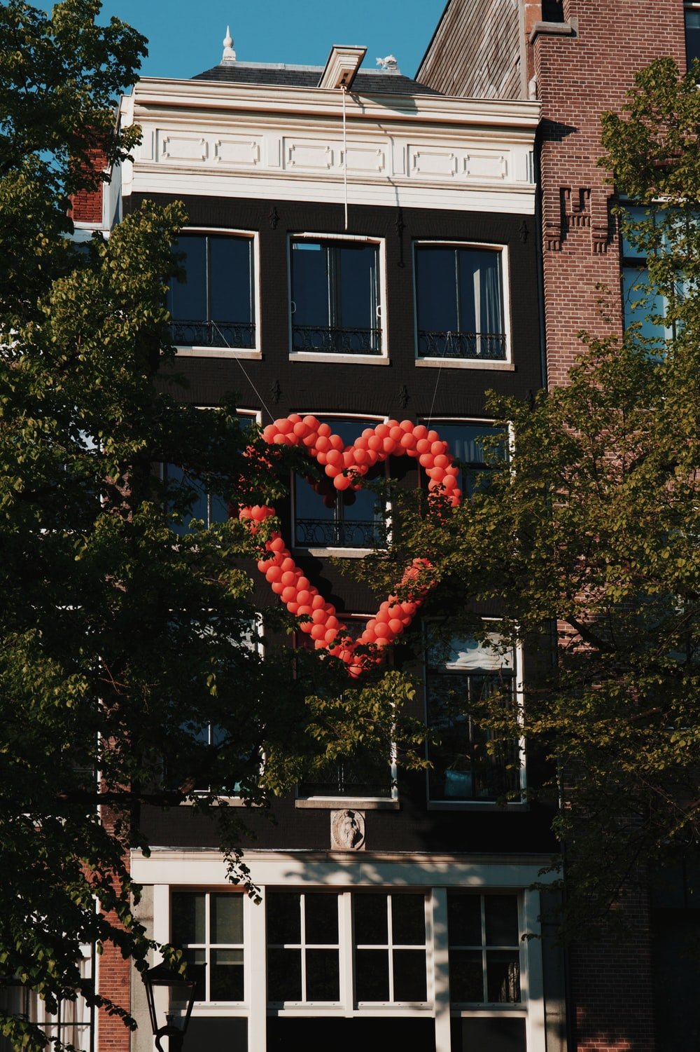 red heart shaped balloons on tree