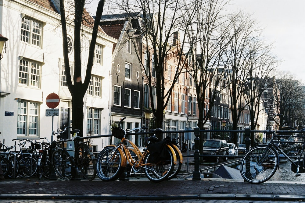 people riding bicycles on road near buildings during daytime