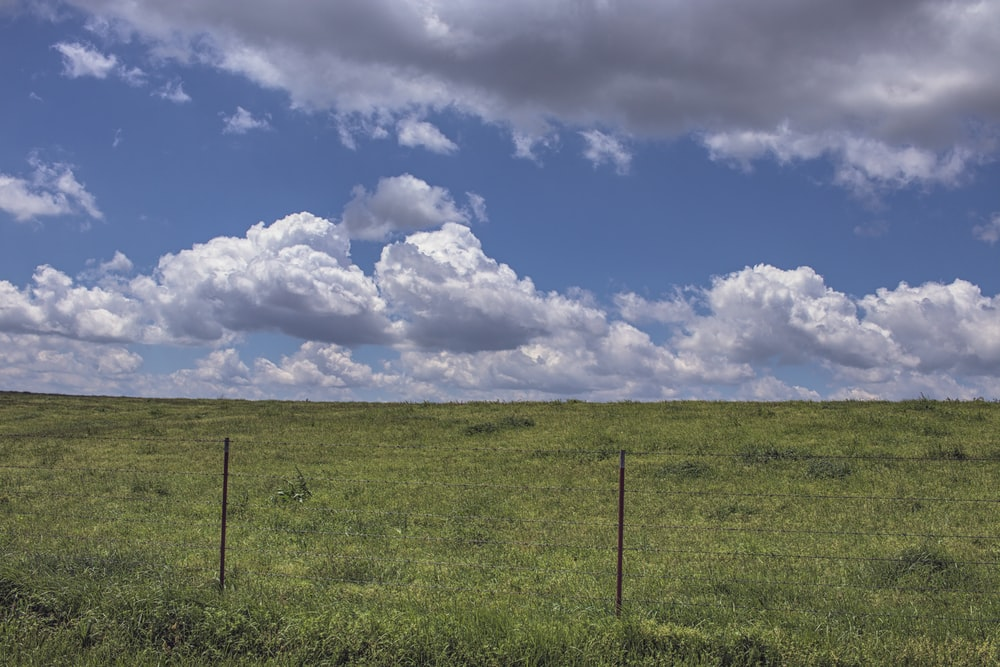 green grass field under white clouds and blue sky during daytime