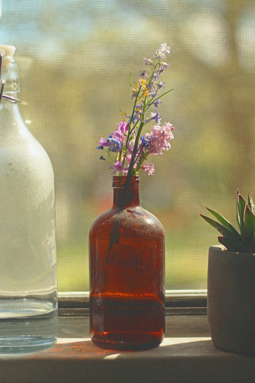 purple flowers in clear glass bottle