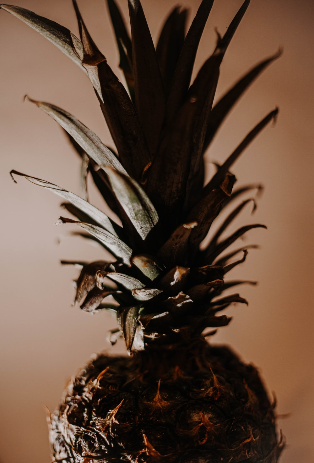 green and brown pineapple fruit