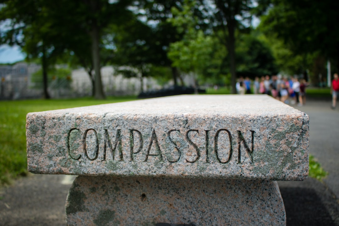 """""""Compassion"""" Bench near Trophy Point at West Point"""