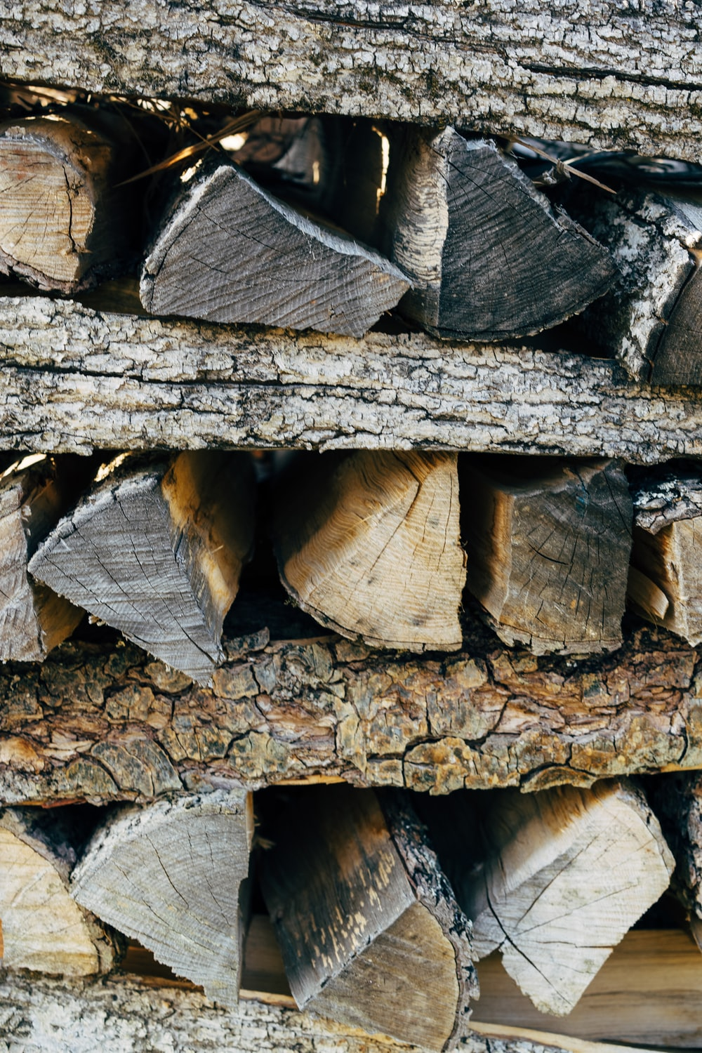 brown and gray wood logs