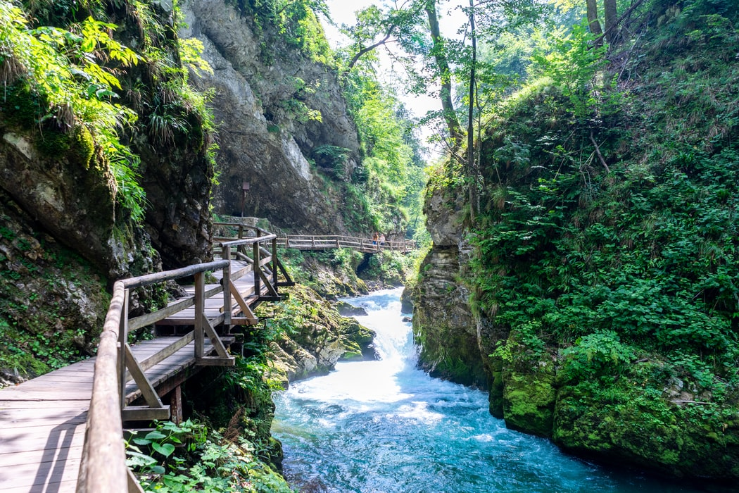 Vintgar Gorge in Bled, Slovenia: Things to do in Slovenia