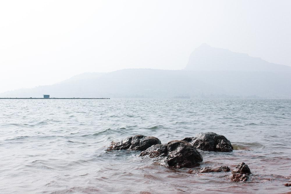 black rocks on sea during daytime