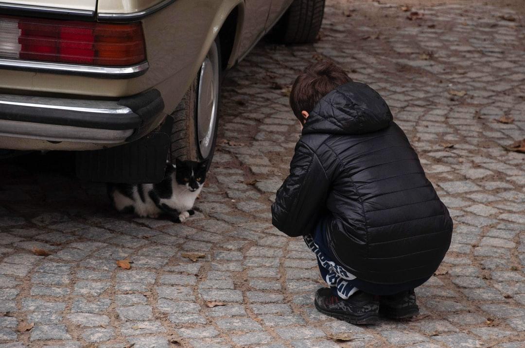 this is from my trip to Melnik. The way the kid and the cat were looking at each other made me smile
