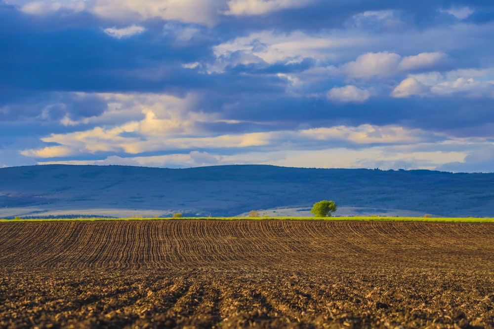 brown field under white clouds and blue sky during daytime
