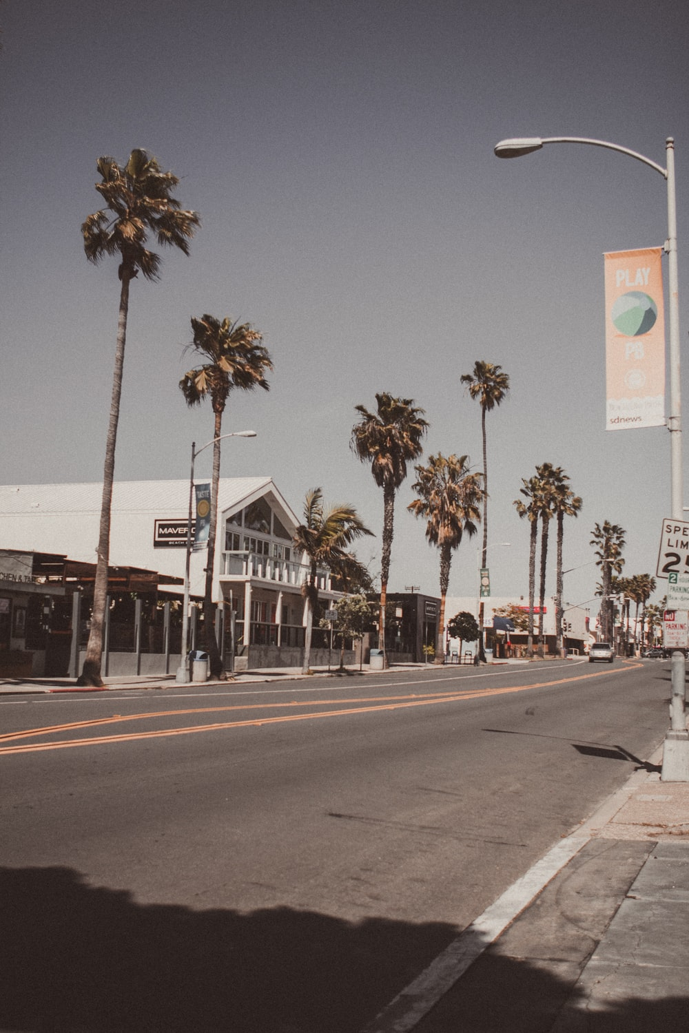 palm trees near road sign during daytime