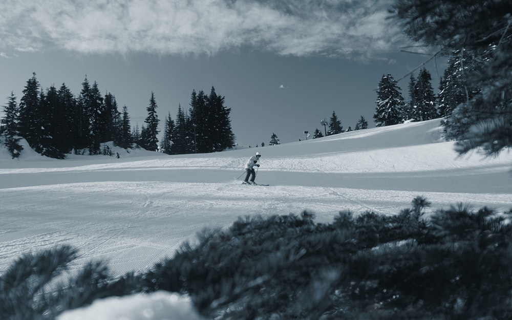 person in black jacket and pants walking on snow covered ground near green trees under blue